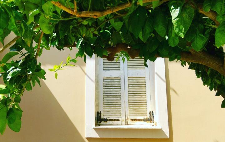 window-mokita-dreams-design