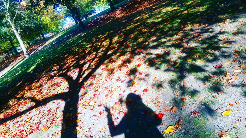 fall autumn nottingham park.jpeg