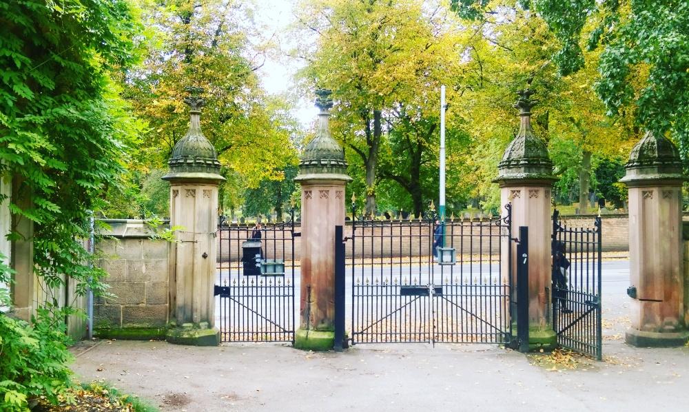 Nottingham arboretum park trees.jpeg