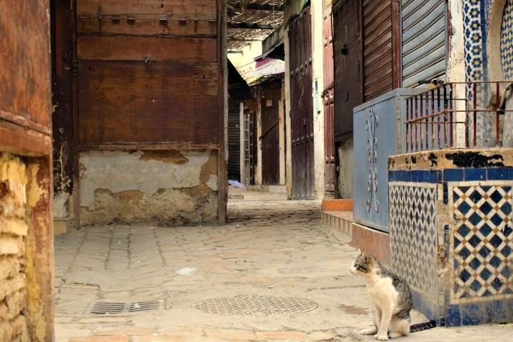 medina fez street photography by ieva kambarovaite